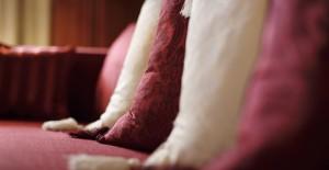 pantone 2015 | marsala | colore dell'anno | cuscini