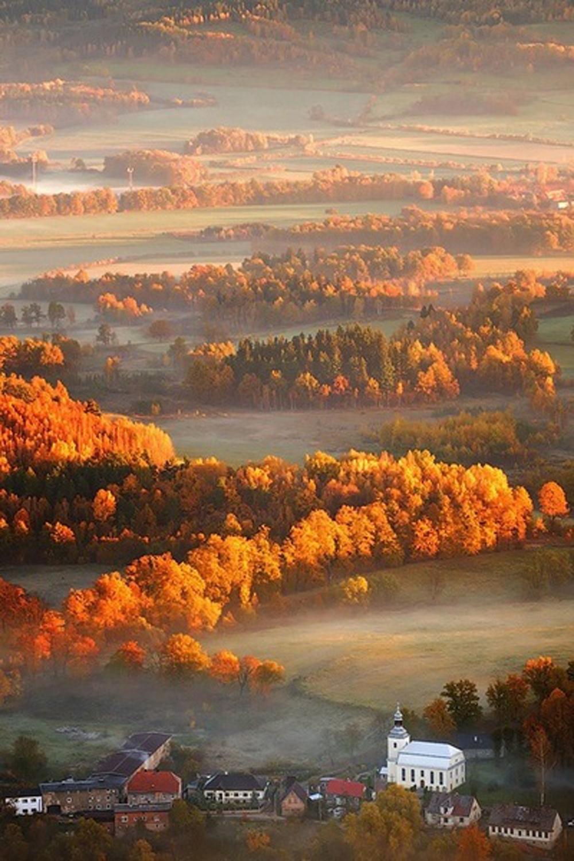 colori degli alberi che cambiano | paesaggio autunnale new england