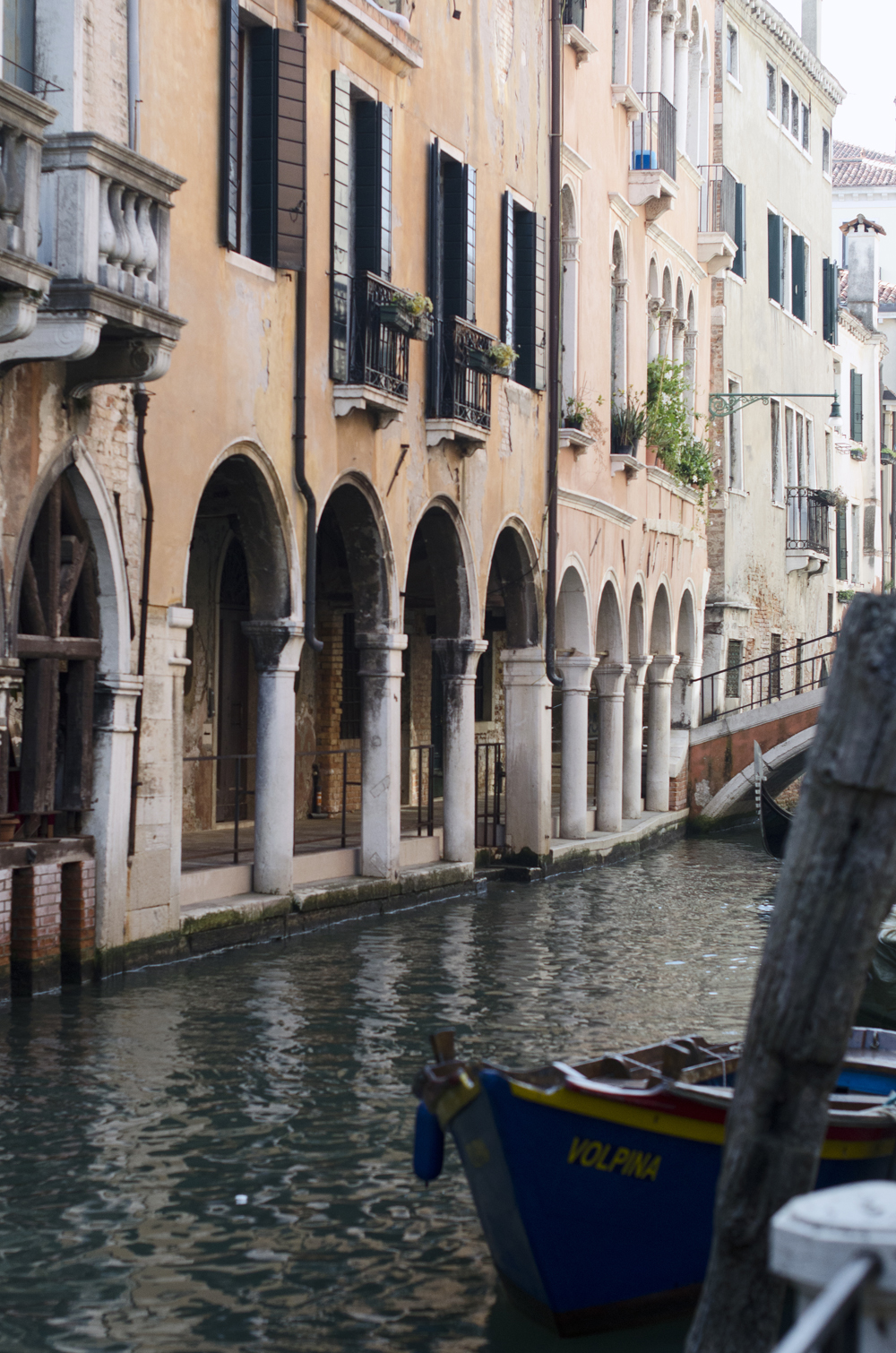tour di venezia in un giorno