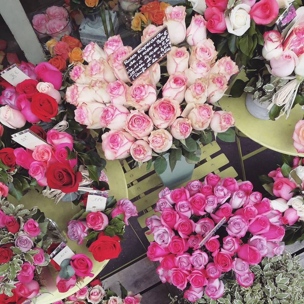 cosa fotografare a parigi: fiori colorati