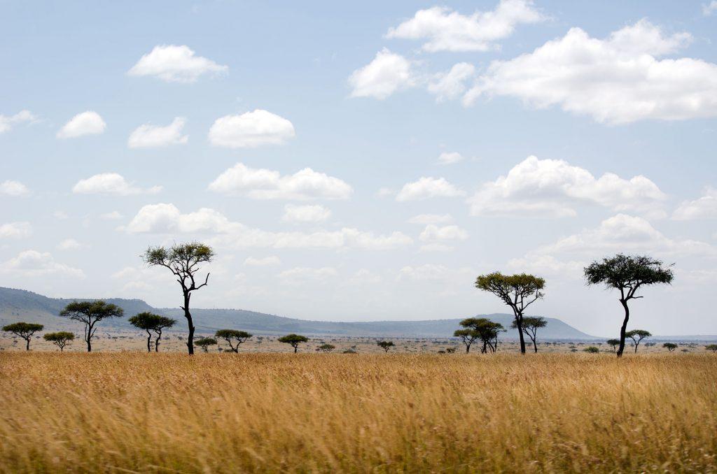 come organizzare un viaggio in kenya