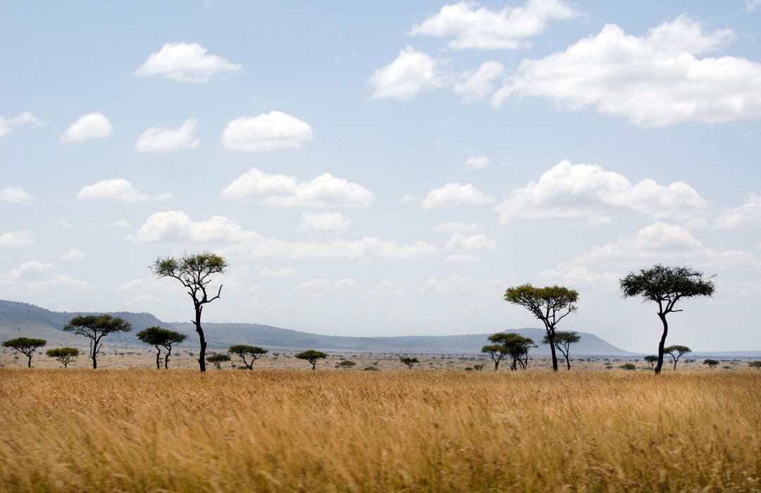 Kenya: organizzare un itinerario indimenticabile sulle orme della regina Elisabetta