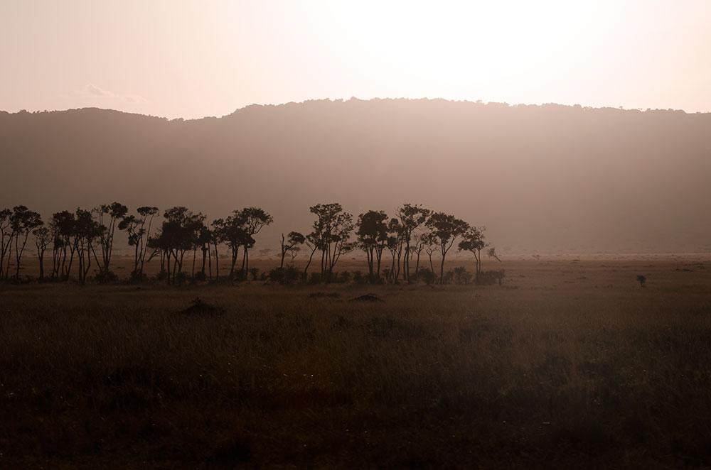 tramonto nella savana
